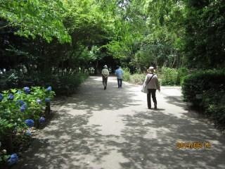長久保公園散策