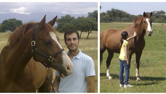 Actividades con caballos en Vivencia Dehesa