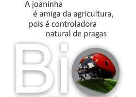 Somos Bio: Agricultura Biológica