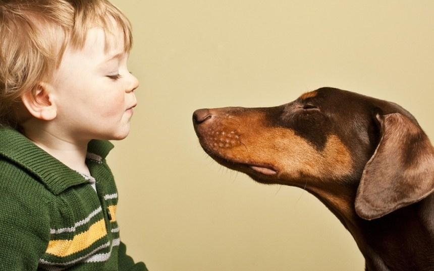 bambino-con-cane