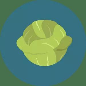 dieta-migliore-verdura