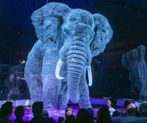 Il Circus Roncalli usa ologrammi al posto di animali