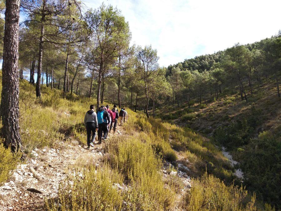 Vértices geodésicos en las montañas de Alicante