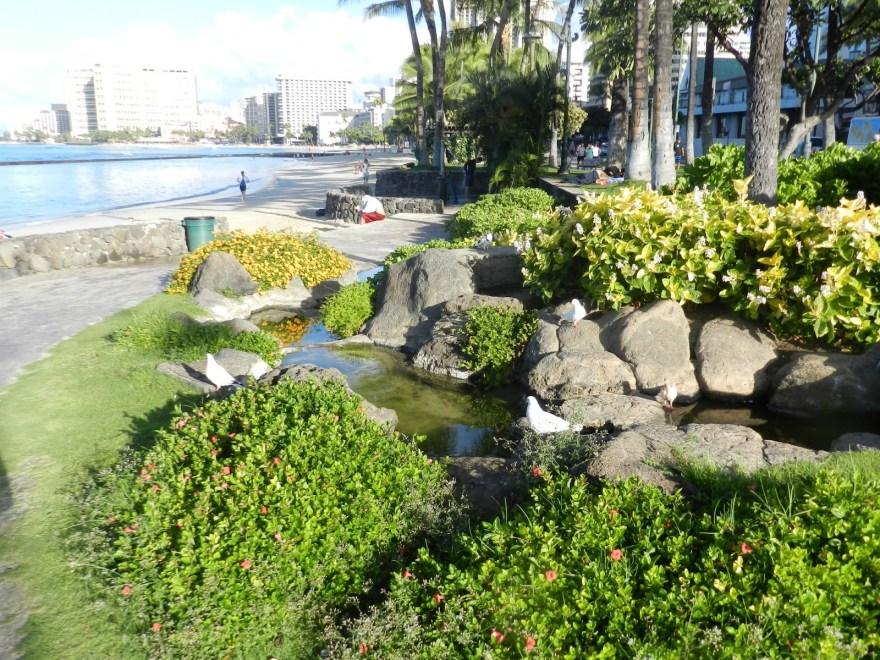Um pedacinho da orla de Waikiki