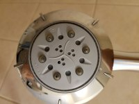 How to de-scale and unclog a stainless steel shower head ...