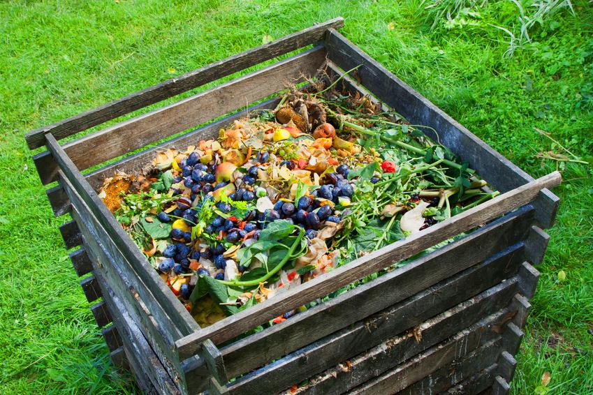 Cómo hacer compost casero · Vivienda Saludable