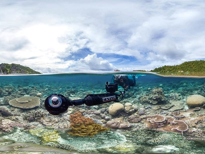 documentales-de-Netflix-Chasing Coral-23-de-abril-2020