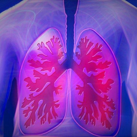 Fortalece-tus-pulmones-y-vence-al-COVID-19-con-estos-consejos 27/05/20