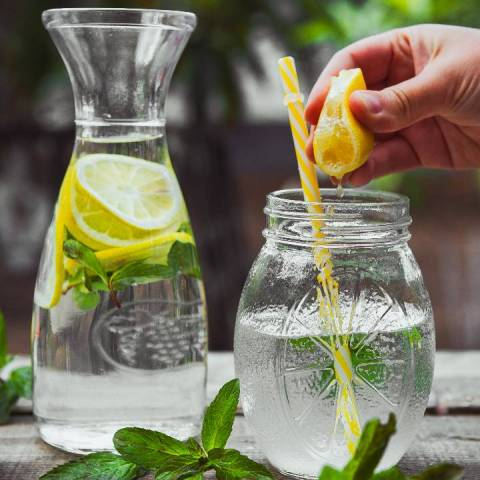 bebidas caseras naturales