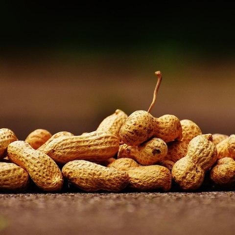 beneficios del cacahuate más sorprendentes salud diabetes