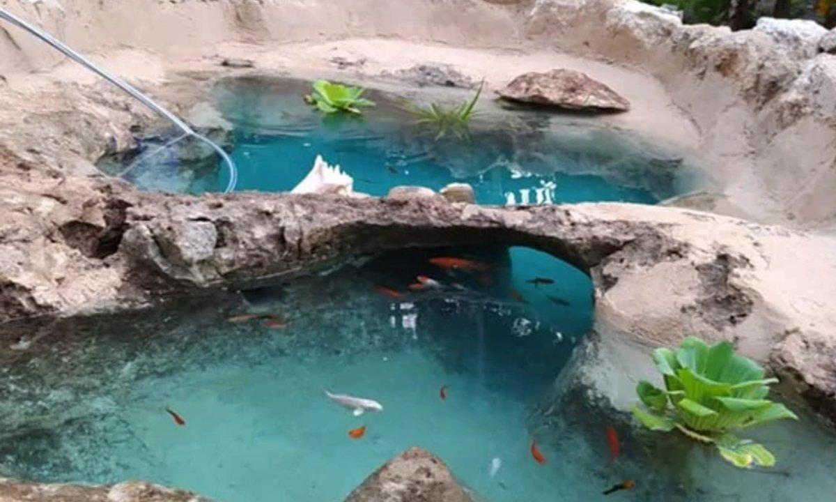 mini cenote estanque en jardin familia de yucatan