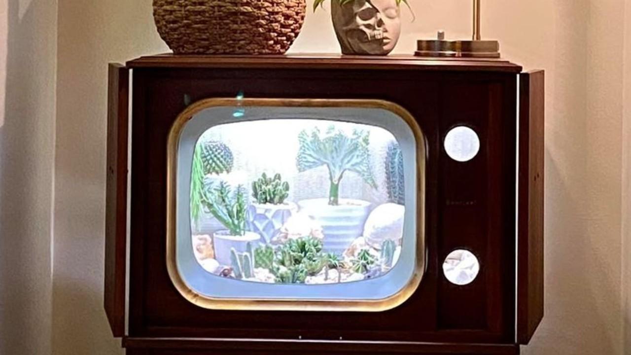 convirtio su televisión en terrario retro