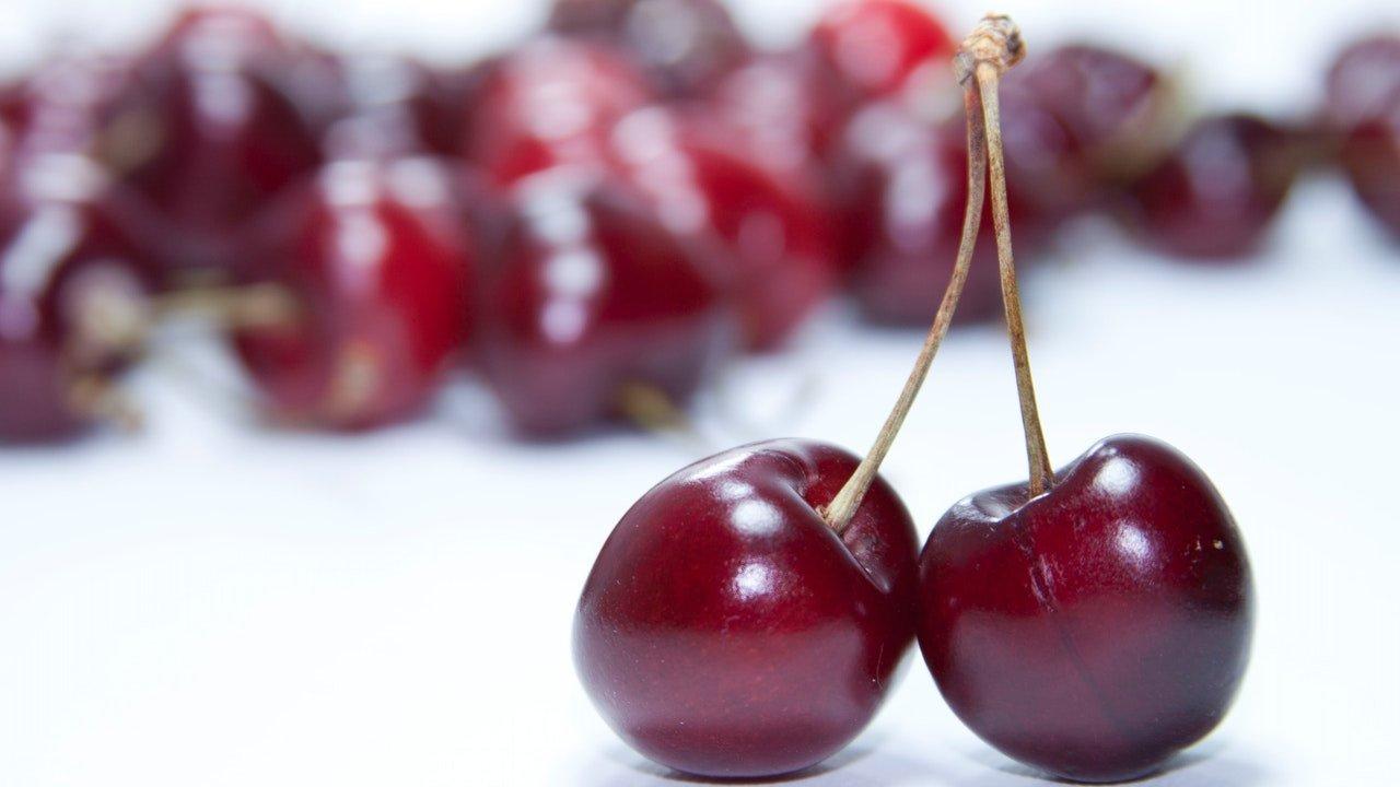 como cultivar cerezas en maceta semillas