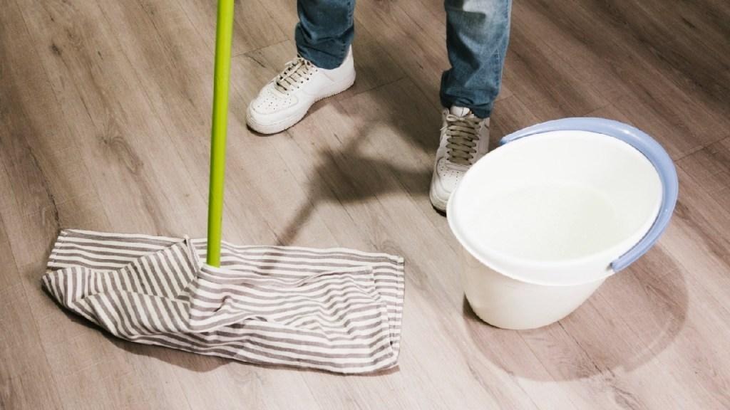 Vorteile der Hausreinigung das Haus mit Rohrstock und Essig wischen