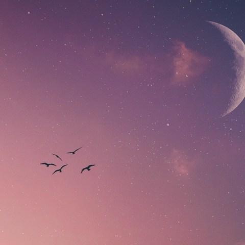 luna nueva tauro signos del zodiaco energía rituales