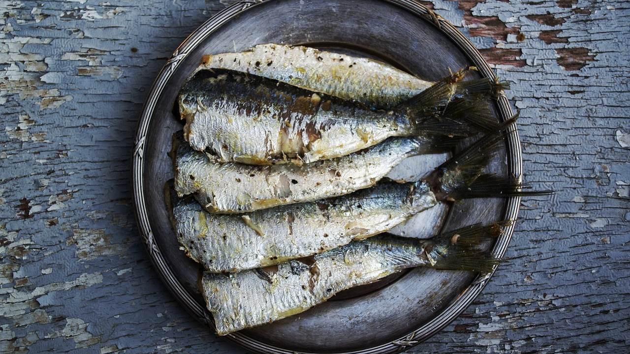 sardina pescado cómo hacerlo a la plancha sin que huela feo