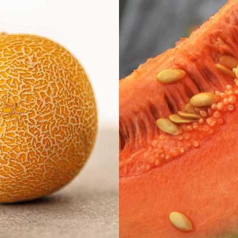 Cómo elegir los mejores melones para que te toquen los más frescos
