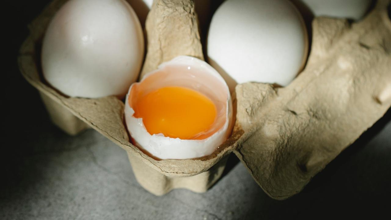 cual es mejor huevo blanco o rojo