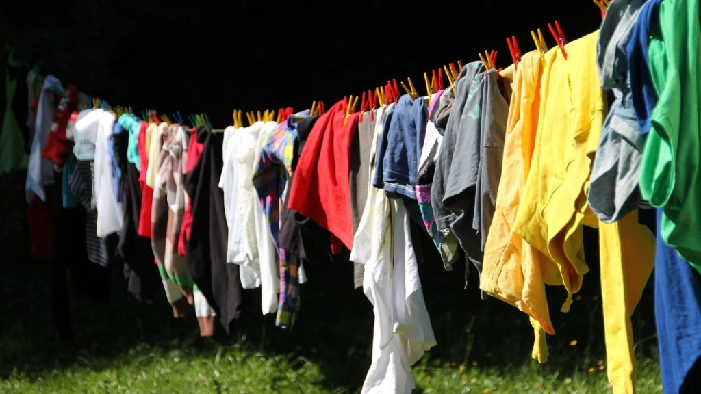 Elimina manchas de moho de la ropa