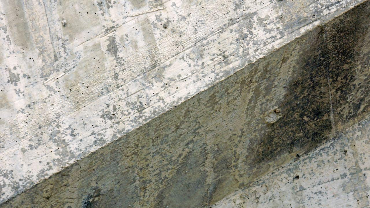 Elimina el moho de las paredes con ayuda del cloro