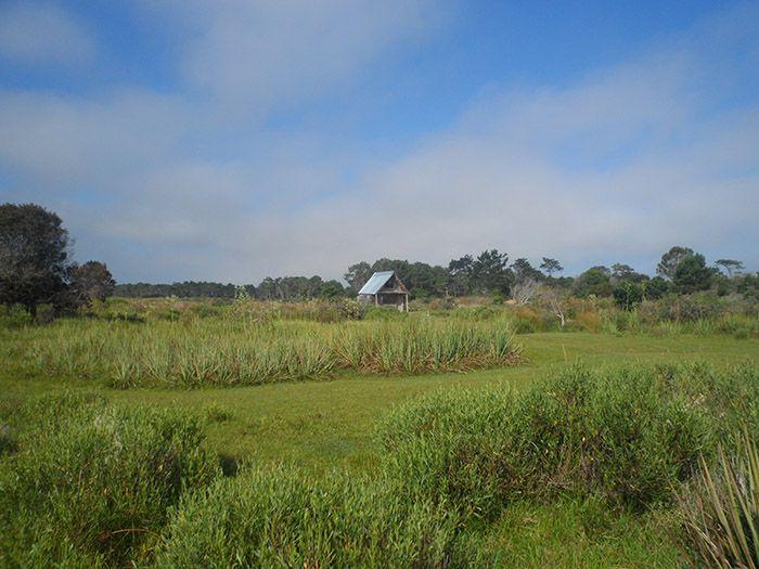 Primera imagen de la reserva natural donde pasaríamos las tres próximas noches.