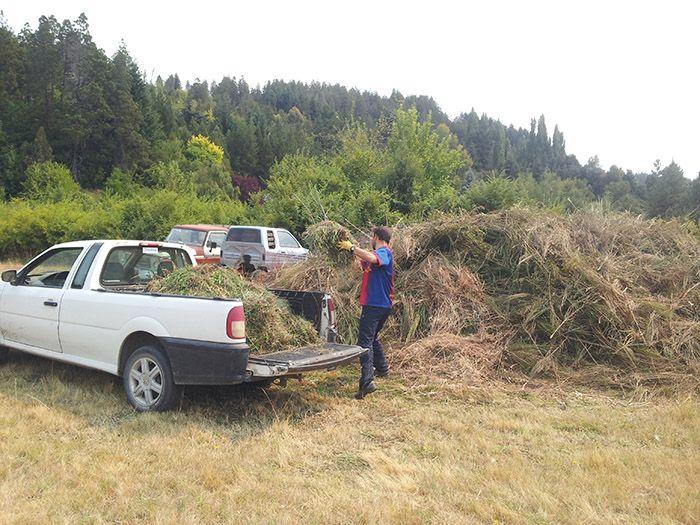 Todas las malas hierbas arrancadas las llevábamos con la furgoneta a la parte de artás de la casa