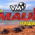 Workaway en Hawaii: Maui