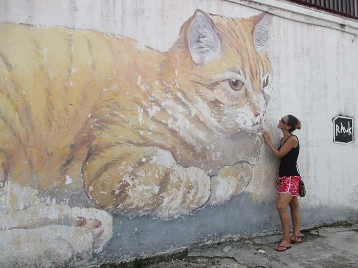 Dibujos de gatos en Georgetown