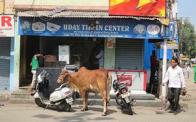 Hyderabad Viviendoporelmundo