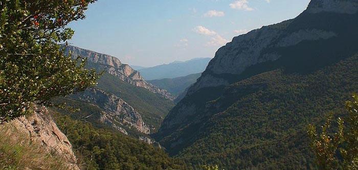 Excursiones de un día en Cataluña. Vall de Sant Aniol
