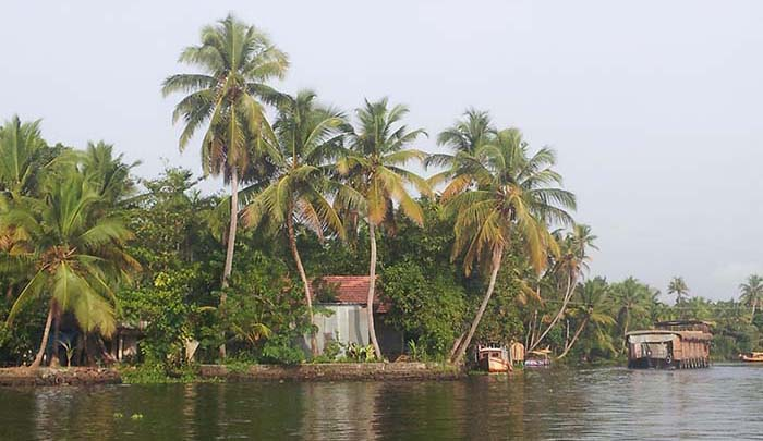 ¿Qué son exactamente los backwaters de Kerala?