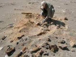 scavi in provincia di san juan