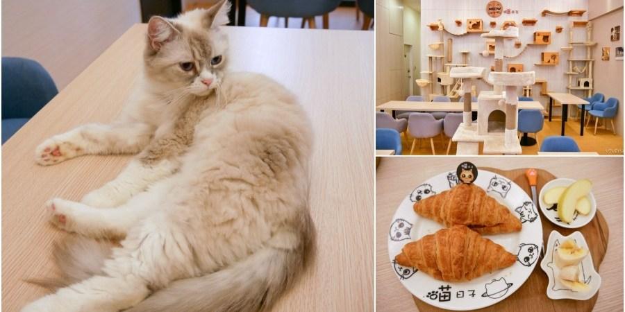 [桃園美食]喵日子café|向陽公園附近新開寵物餐廳.貓咪主題式咖啡館.無用餐時間限制免服務費下午茶 @VIVIYU小世界