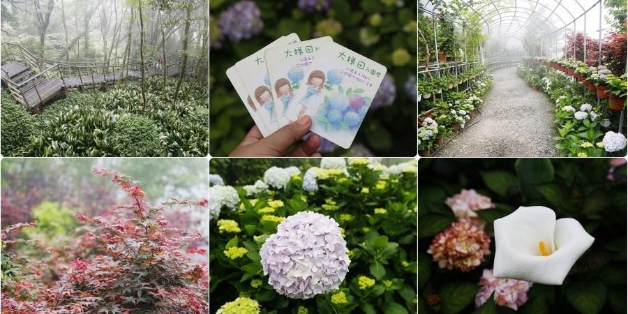 [台北旅遊]大梯田花卉生態農園