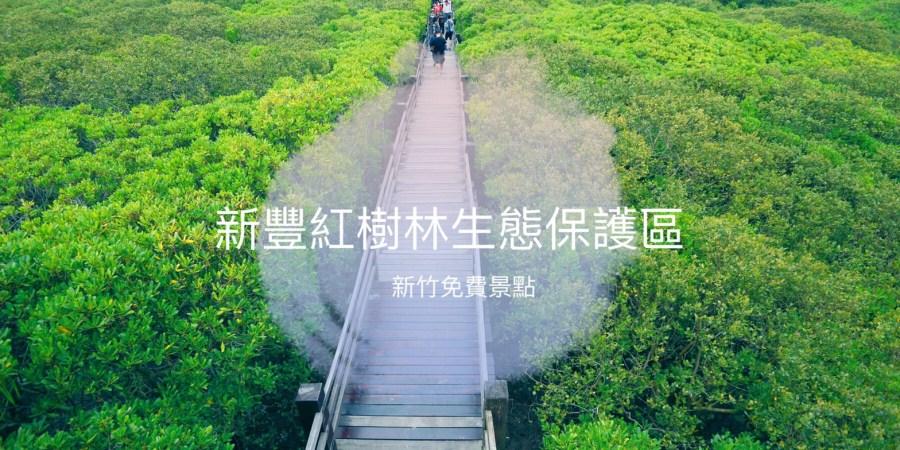新竹一日遊,新竹二日遊,新竹新豐紅樹林綠色步道,新竹旅遊,新竹景點,新豐景點,新豐紅樹林生態保護區,紅樹林 @VIVIYU小世界