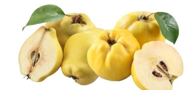 Risultati immagini per mela cotogna