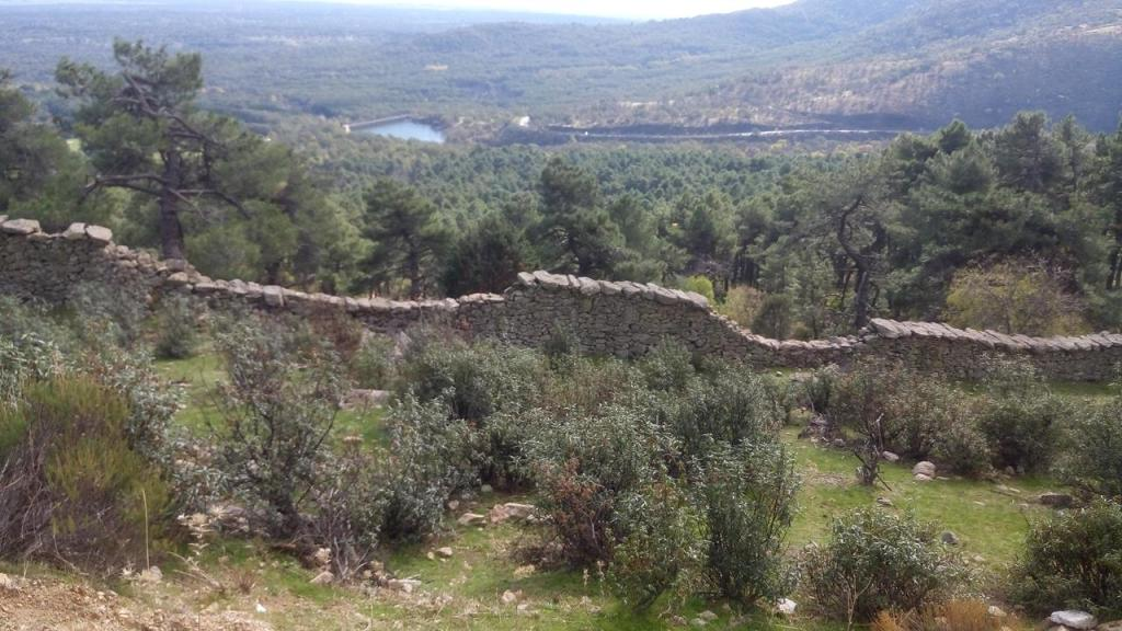 Cerca Histórica