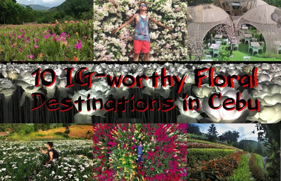 10 IG-Worthy Floral Destinations in Cebu