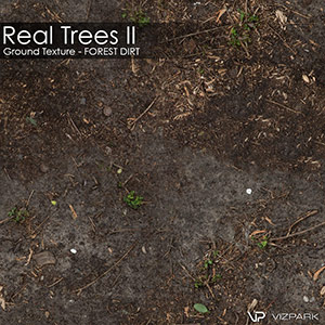 Real Trees Ground Texture - Forest Dirt