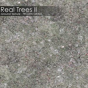 Real Trees Ground Texture - Frozen Grass