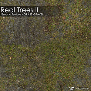 Real Trees Ground Texture - Grass Gravel
