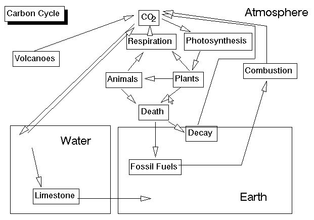 Detailed Scientific Nitrogen Cycle Diagram Ecosystem The Life Support System Dr V K Maheshwari Ph D