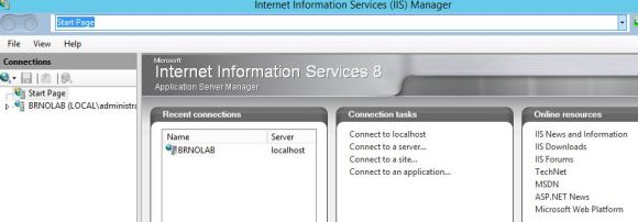 IIS Manager installed