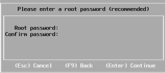 Password for VM ESXi installation
