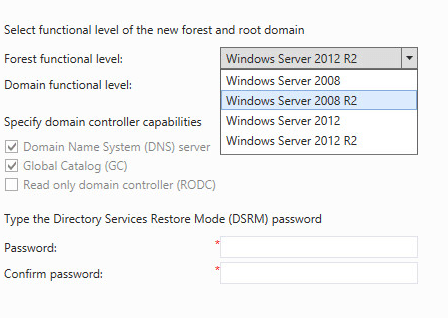 Installing Active Directory and DNS on Windows Server 2012 R2 - Functional level for new forest and root domain