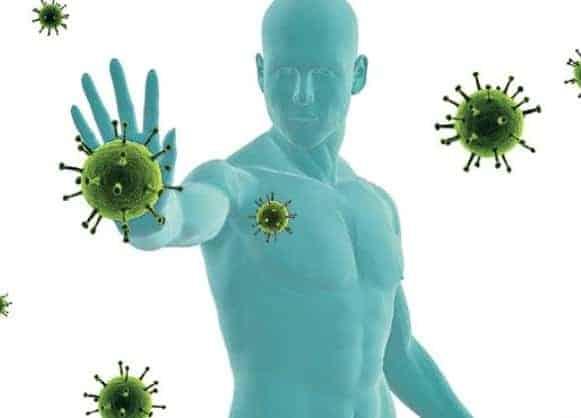 strong immuntiy system immune