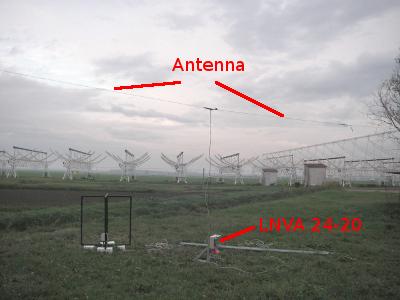 Medicina Radio Observatory