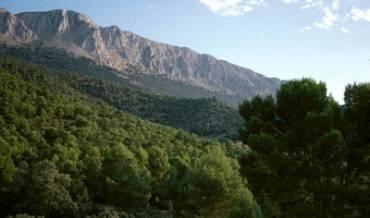 Los Vlez Parque Natural Sierra MaraLos Vlez