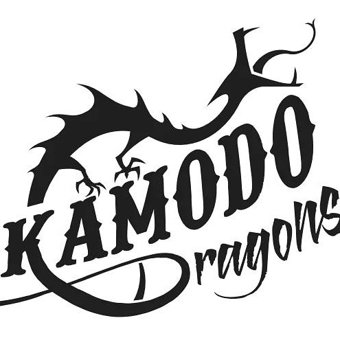 New competitive dragon boat team looking to add paddlers
