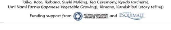 Japanese Cultural Fair Virtual edition, VNCS